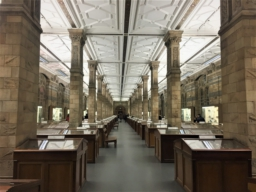 museum, display cases, columns